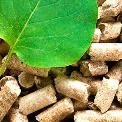 Biomass Sector