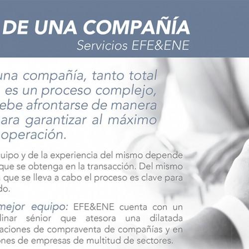 Ficha de producto-Venta de una compañía